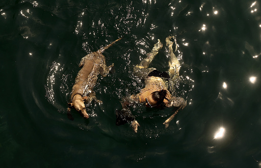 A woman and a dog swim during hot temperatures down the Limmat river in Zurich