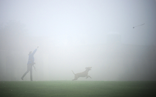Fog shrouds Crystal Palace as a woman plays with her dog in London