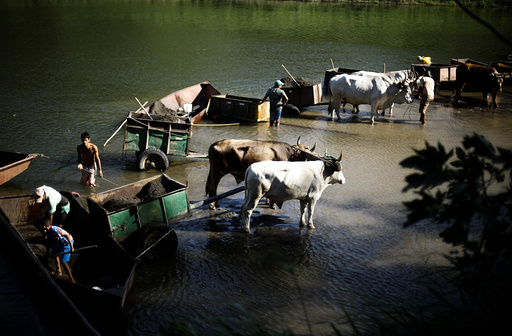 People with their ox-carts shovel sand by artisanal methods from the Tempisque river to be sold for construction purposes, in Filadelfia, Costa Rica