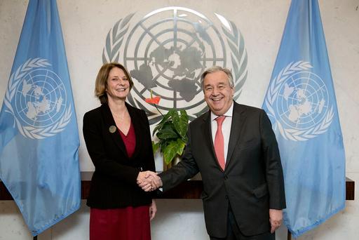 FN-Ambassadør i New York