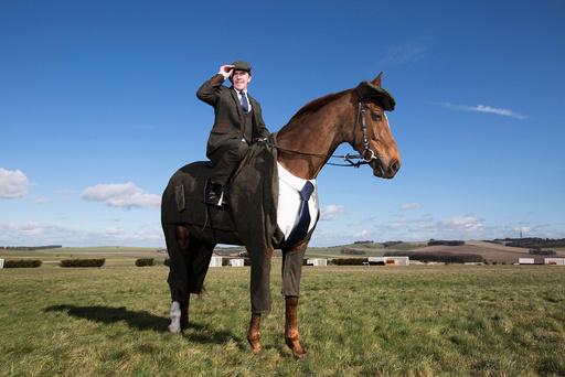 Tweeds for horses