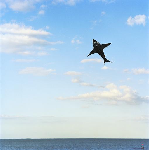 Shark kite over sea