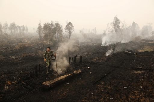An Indonesian soldier checks on a peat land fire near Palangkaraya, Central Kalimantan, Indonesia