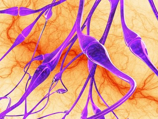Nerve synapses, artwork