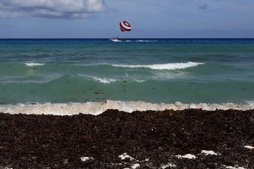 Wide Image: Earthprints: Cancun