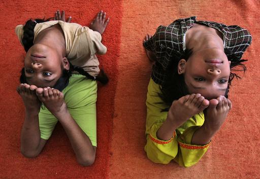 Participants perform Poorna Bhujangasana at a yoga camp in Chandigarh