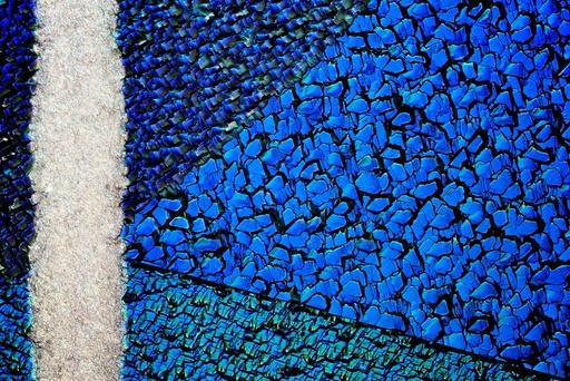 Silicon solar cell, light micrograph