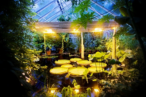 Victoriahuset i Botanisk Hage