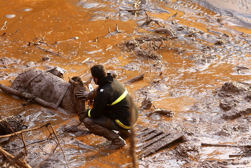 A rescue worker touches the face of a horse as they try to save it at Bento Rodrigues district, witch was covered with mud after a dam owned by Vale SA and BHP Billiton Ltd burst in Mariana