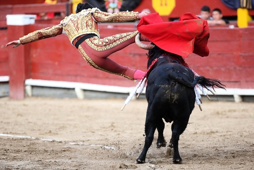 Lord of Miracles Bullfighting Fair in Lima
