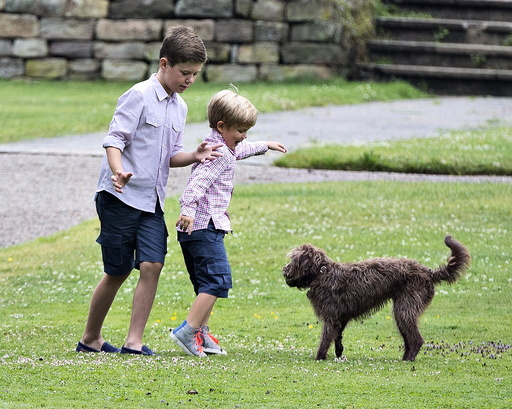 Denmark's Prince Christian and Prince Vincent play with the dogs at Graasten Castle