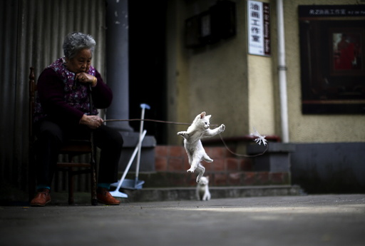 A woman plays with a kitten inside of a line house in downtown Shanghai