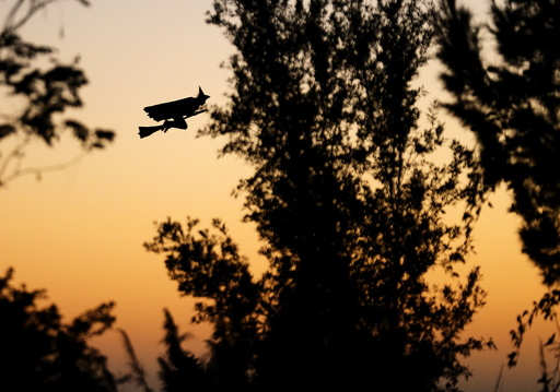 A remote control witch flies over a neighborhood as kids trick or treat below during Halloween in Encinitas