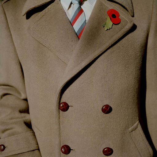 Brown coat and poppy