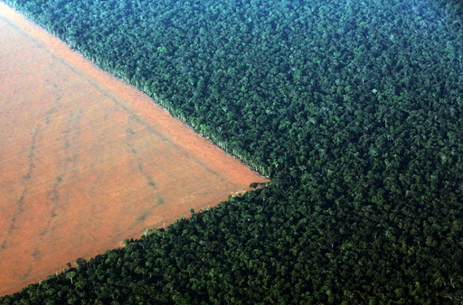 The Amazon rain forest (R), bordered by deforested land prepared for the planting of soybeans, is pictured in this aerial photo taken over Mato Grosso state in western Brazil