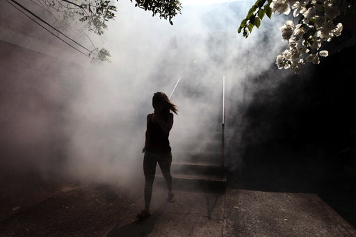 A woman walks away from her apartment as health workers fumigates the Altos del Cerro neighbourhood as part of preventive measures against the Zika virus and other mosquito-borne diseases in Soyapango, El Salvador