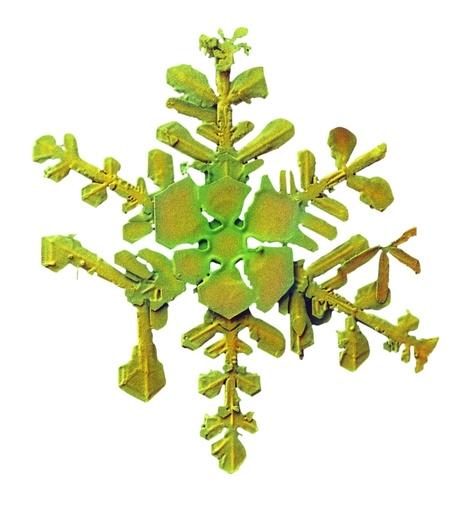 Snowflake, low-temperature SEM