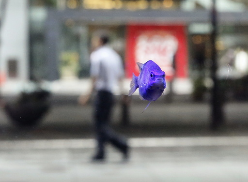 A tropical fish swims in a fish tank as a passer-by walks at a business district in Tokyo