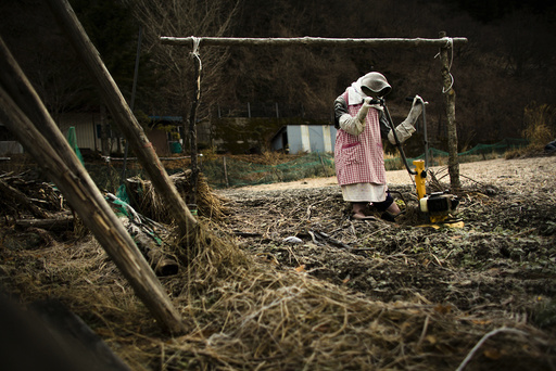 A scarecrow is arranged to look as if it is plowing a field in the village of Nagoro