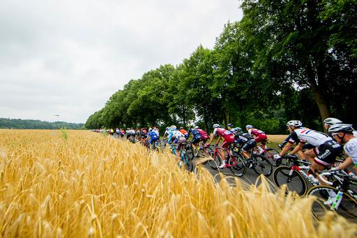 Sykling: Tour de France 2017, 2. etappe