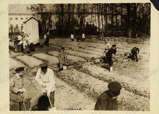 Tsar Nicholas II and family gardening at Alexander Palace during internment at Tsarskoye Selo, 1917.