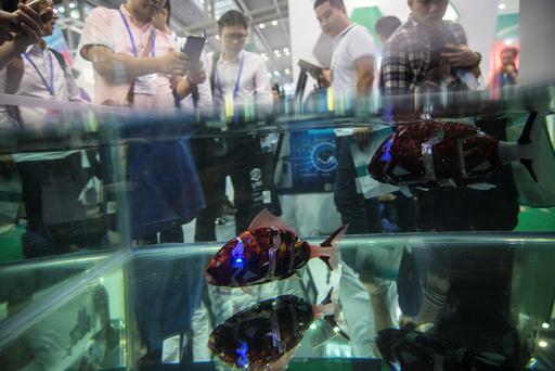 Fish robots swim in a pool during China Hi-Tech Fair in Shenzhen