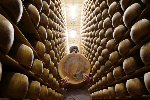 Worker carries fresh Parmesan wheel off storehouse shelf a 4 Madonne Caseificio dell'Emilia dairy cooperative in Modena