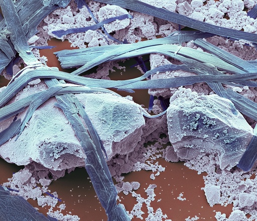Antibacterial toothpaste, SEM