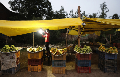 A fruit seller hangs a light bulb at his mango stall by the side of a highway on the outskirts of Prayagraj, in the northern Indian state of Uttar Pradesh, Friday, June 19, 2020. Mangoes are a popular summer fruit in India. (AP Photo/Rajesh Kumar Singh)