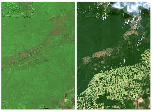 The Wider Image: Earthprints: Rio Pardo