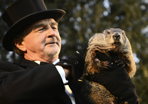 Groundhog co-handler Griffiths holds up groundhog Punxsutawney Phil after Phil's annual weather prediction on Gobbler's Knob on the 130th Groundhog Day in Punxsutawney