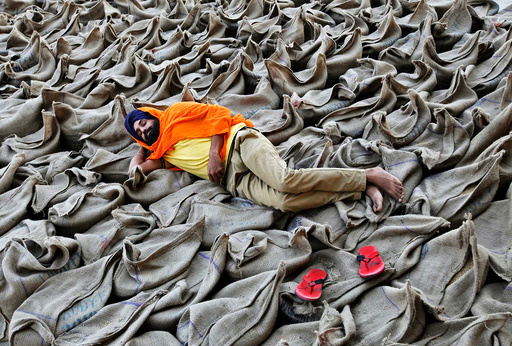 A farmer rests upon sacks filled with paddy at a wholesale grain market in Chandigarh