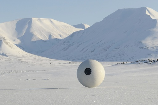 New Cameras Spy On Polar Bears