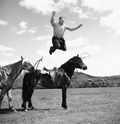 Ferie på hesteryggen