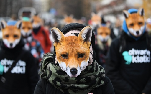 'Day without fur' demonstration in Warsaw