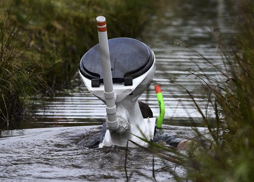 A competitor takes part in the 31st World Bog Snorkelling Championships in Llanwrtyd Wells