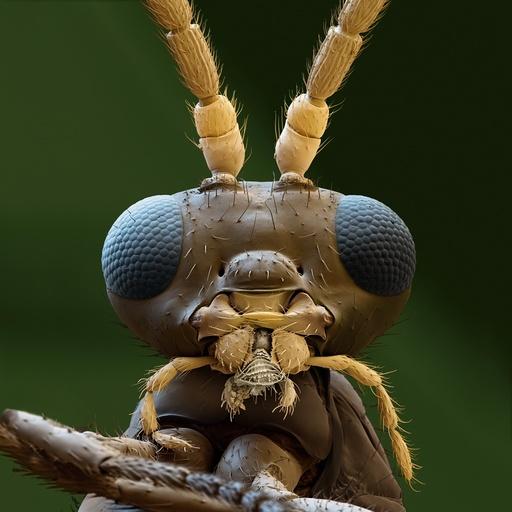 Aphidius colemani wasp, SEM