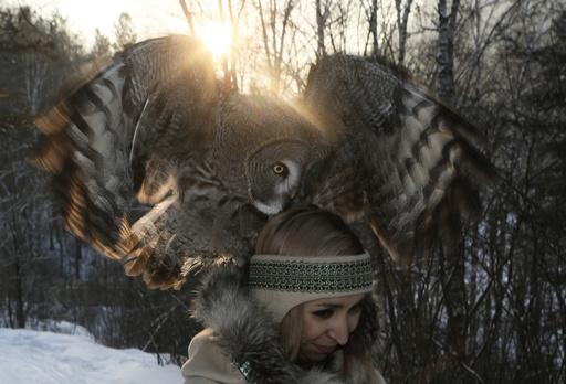 Zoo employee Cherepanova walks with great gray owl during training session in Siberian taiga forest outside Royev Ruchey zoo in suburb of Krasnoyarsk