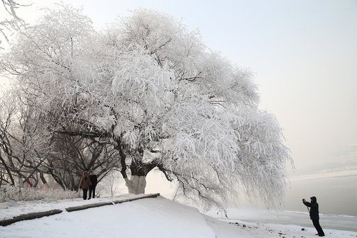 A man captures rime at a park beside a river in Shenyang