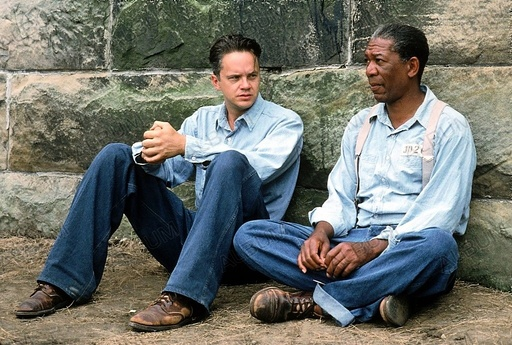 SHAWSHANK REDEMPTION, THE (1994), directed by FRANK DARABONT. MORGAN FREEMAN; TIM ROBBINS.