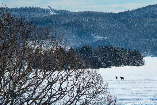 Vinterferie i Oslo.