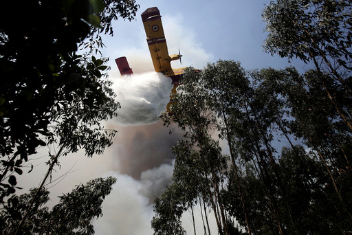 A firefighting plane dumps water on a forest fire in Louriceira