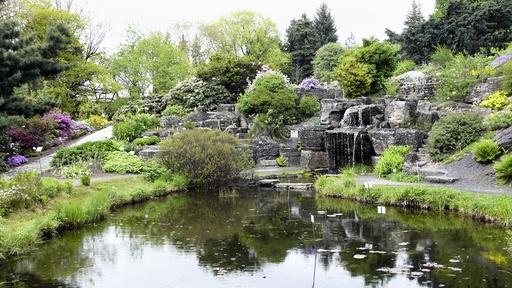 Bekk, foss og dam. Fjellhagen i Botanisk Hage, Naturhistorisk museum. Universitetet i Oslo.