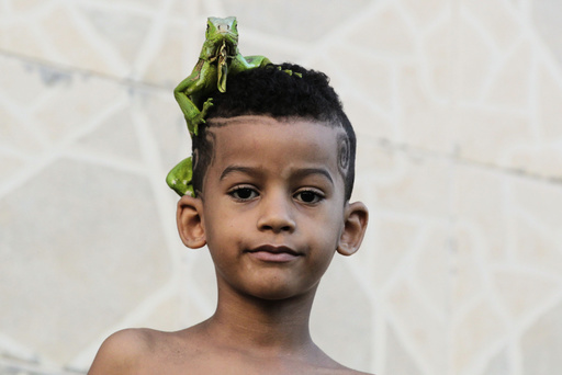 A boy stands outside his home with an iguana on his head in Salvador