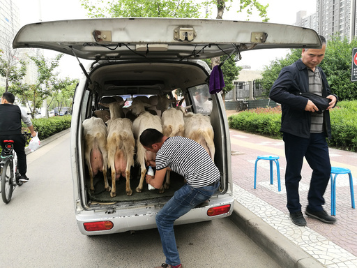 A man sells fresh goat milk at the back of a minibus in Xi'an