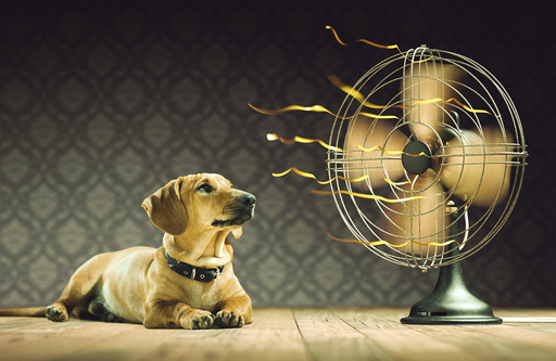 Dog next to electric fan, illustration