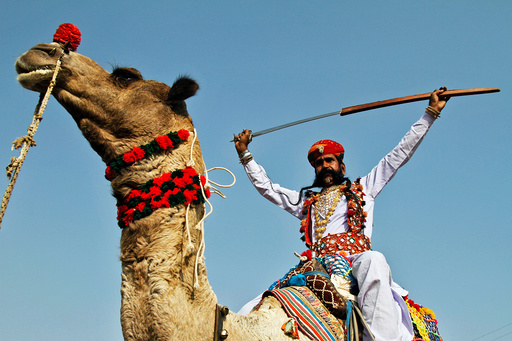 An artist displays a sword on the last day of Pushkar Fair, during which thousands of animals, mainly camels, are brought to the fair to be sold and traded, in the desert state of Rajasthan