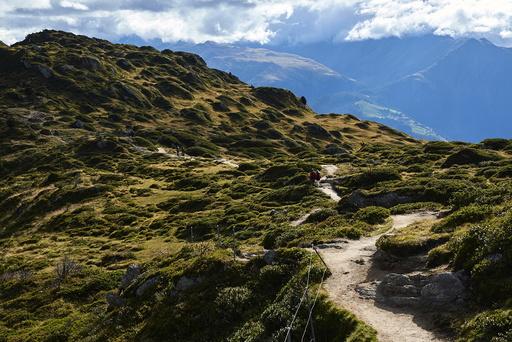 Wider Image: Earthprints: Aletsch Glacier