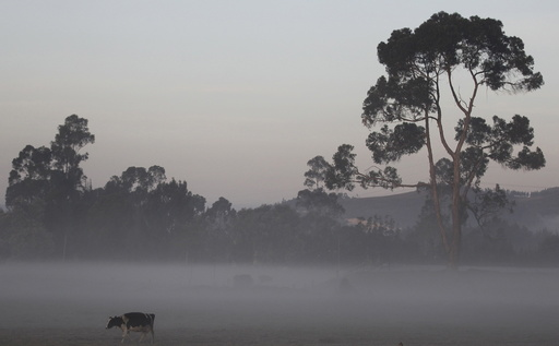 Bogota savanna, with an altitude of about 2,600 meters above sea level, is seen experiencing low temperatures in Madrid municipality near Bogota