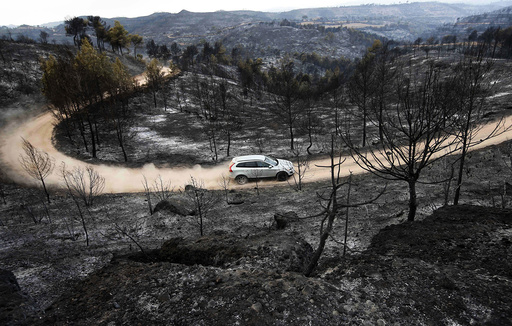 Car drives on a dirt road past trees that were scorched by a forest fire near Montserrat in Sant Salvador de Guardiola, in the northeastern region of Catalonia, Spain